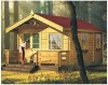 wooden house container house