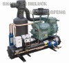 Condensing Units for refrigeration cold room (Bitzer Two-stage Compressor)