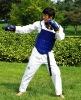 Taekwondo training equipment