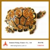 funny colorful tortoise trinket jewelry box