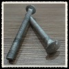 mushroom head and square neck carriage bolt
