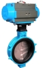 Butterfly Valve with Pneumatic Actuator - 2