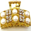 Brh-0958 fashion brooch CLAW