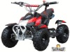 NEW 2 stroke atvs