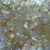 Concinnity Yellowlip Shell Mosiac Tile