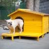 Luxury Wooden Dog House
