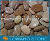 multicolour river pebble wash stone