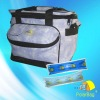 Outdoor cooler bag for medication