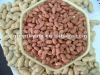 good quality peanut kernels(red and white)