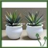 Mini artificial plant