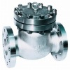 API Design Cast Steel Check Valve