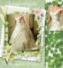 V-neck and Embroidered Wedding Dress WD487