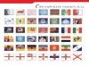 Flag ( National flag, Printing flag)