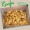 fresh wet ginger