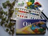 Students' Quality Oil Colour --12 colors*12ML