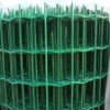 Euro Welded Wire Mesh