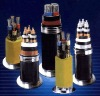 SWA/SWP/XLPE ARMORED Power Cable