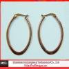 IP gold stainless steel earrings
