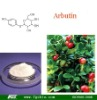 Arbutin with super quality (CAS No.:497-76-7) for whitening
