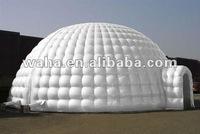 water cube igloo tent