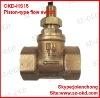 OKD-HS15 Piston-type flow switch 1/2''-paypal switch