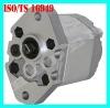 Mini Oil Gear Pump for Small Hydraulic System
