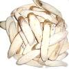 Paeonia lactiflora(White Paeony Root)