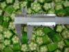 frozen okra (coin cut),organic