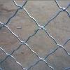 Beautiful Grid Wire Mesh