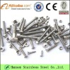 Stainless Steel Screw and Fasteners