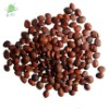 spine date seed extract 2% 10:1 5:1