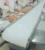 meat belt conveyor