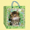 shopping bags/paper bags/ packaging bags