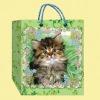 shopping bags/paper bags/ packaging bags