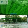 The Shade Net of Green House with Best Price