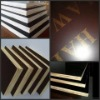 Film faced plywood, Poplar, construction, building material, timber, shuttering board