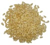 Pure natural green pine nut kernels
