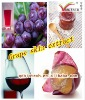 Red color for wine Grape Skin Extract Anthocynin