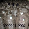 Dog mesh / welded wire nettings from factory