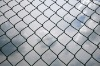 Welded Wire Mesh Fence (Factory Exporter)