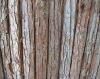 Wood Bark Screening (Plastic Coated Wire)