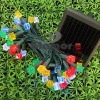 LED Solar string Light/solar decorative light (S3 Gift Box)