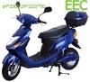 (ZW2000DQT-C02) EEC electrical motorbike
