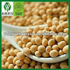 soy protein isolate for meat processing