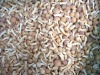 2011 new frozen nameko good quality and competitive price HACCP and ISO certificate