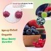 spray dried blueberry powder